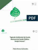 Flávia Ramos Guimarães, secretária executiva da Comissão de Gestão - Agenda Ambiental da ENSPFiocruz