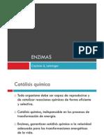 12._Enzimas