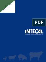 Catalogo Intecal