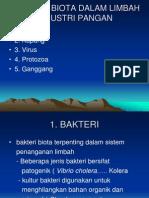 5 Biota