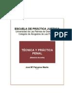 4e036c_TÉCNICA Y PRÁCTICA PENAL 2012