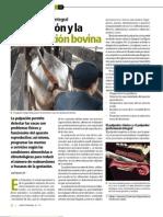 6. Salud Animal