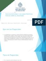 TIPOS DE PESTICIDAS Y SUS CARACTERISTICAS TÓXICAS