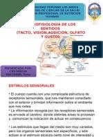 Neurofisiologia de Los Sentidos Expo