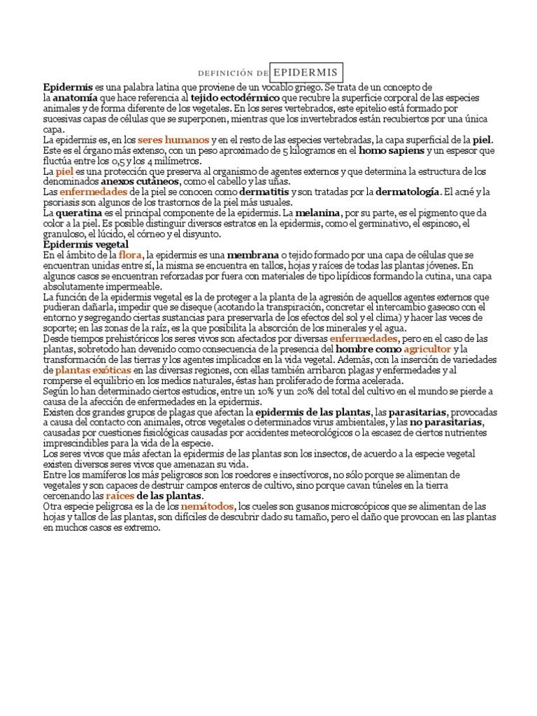 DEFINICIÓN DE EPIDERMIS