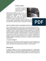 Turismo sostenible.docx