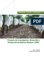 - 001 1 Proyecto de Investigación Producción de Bananos 7000T
