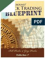 Underground Stock Trading Blueprint, Bill Poulos