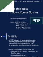 Encefalopatia Espongiforme Bovina