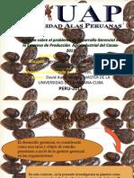 Diapositiva Informe Técnico