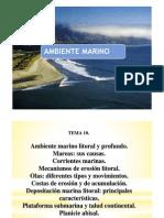 10 Geologia Tema 10