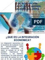 nivelesdeintegracineconmicadelosacuerdoscomerciales-121116140117-phpapp02