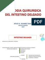 22 Patologia Quirurgica Del Intestino Delgado 2011