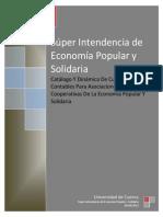 SEPS plan de cuentas no financiero.pdf