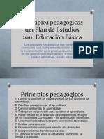 Principios pedagógicos del Plan de Estudios 2011