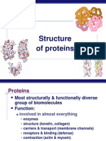 6. Proteins