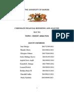 Dac 511 Group 8 Credit Analysis