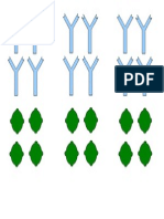 anticorps_antigènes