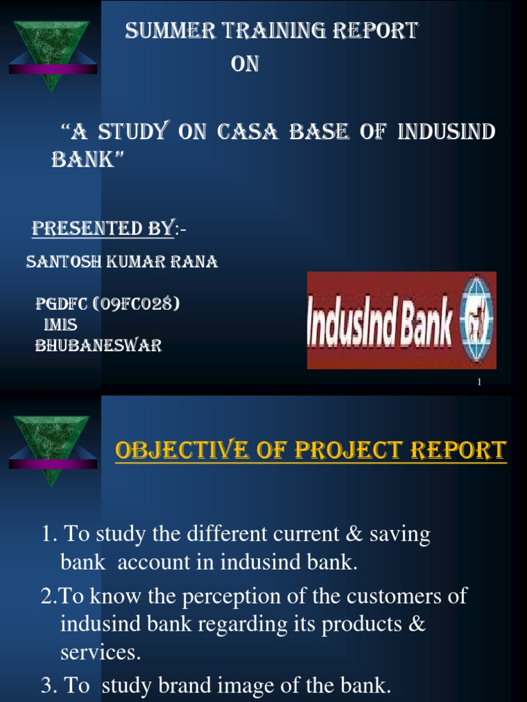 indusind bank project report
