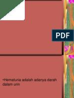 Hematuria Pada Pria.ppt