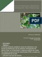 piperaceas - copia.pptx