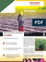 Boletin Papa Tambo