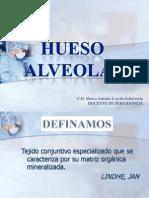 huesoalveolar-110412161649-phpapp01