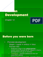 Chapter 12 Development Basic-1