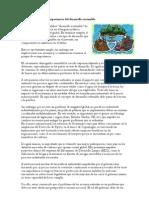 Características de La importancia del desarrollo