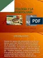 LA ETOLOGÍA Y LA NEUROETOLOGÍA. Ps. Jaime Botello Valle.