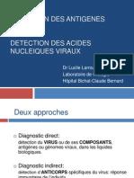 détection_antigènes_viraux_et_acides_nucléiques_2012