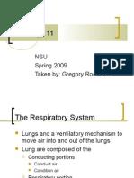 Respiratory Sytem
