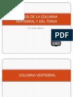 50150108 5 Huesos de La Columna Vertebral y Del Torax Prof Pedro Bolivar