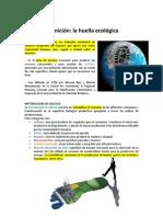 TEMA 03_La Huella Ecológica