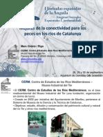 Conectividad Para Los Peces en Los Rios de Catalunya