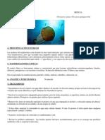 Protocolo toxicologia M