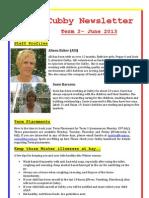 Cubby Newsletter Term 2 2013