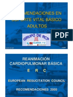1 RCP Basica