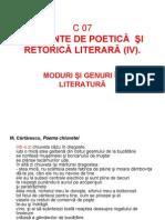 C07_Teoria literaturii_2011