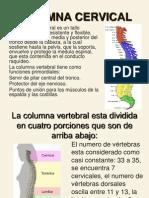 Clase 4 Columna Cervical 1 1