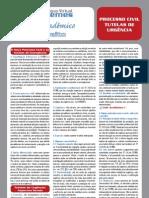 Guia Acadêmico - (Proc. Civil - Cautelar)