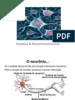 Sinapses & Neurotransmissores