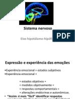 Sistema Nervoso - Slide 2