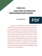socio-economic survey
