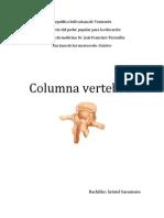 COLUMNA VERTEBRAL Y MÉDULA ESPINAL  Kristel Sarmiento