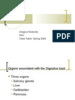 Digestive System Part II -NSU