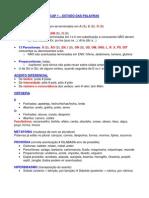 PORTUGUES - Gramatica