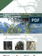 Il Deperimento Del Pino Silvestre Nelle Alpi Occidentali