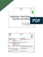Energia Proteina Vacas Lactancia