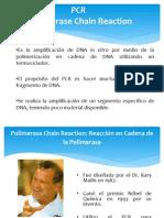 PCRweb